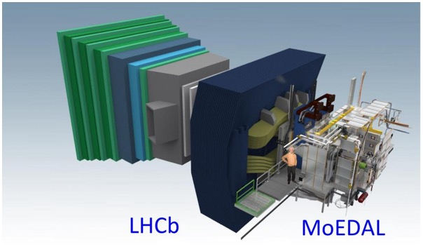 The MoEDAL and LHCb geometry models.